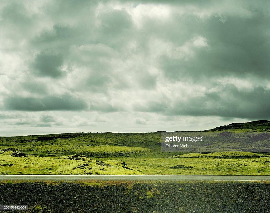 Barren roadside landscape