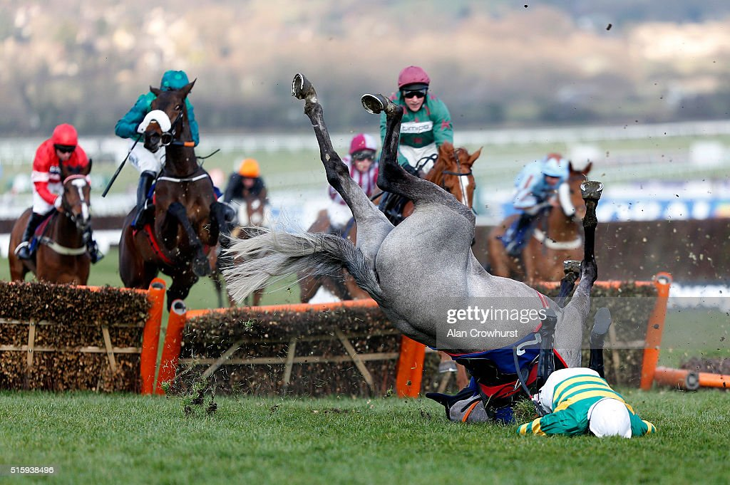 <a gi-track='captionPersonalityLinkClicked' href=/galleries/search?phrase=Barry+Geraghty&family=editorial&specificpeople=198943 ng-click='$event.stopPropagation()'>Barry Geraghty</a> falls from Campeador at the last in The Fred Winter Juvenile Handicap Hurdle Race, before both getting up unhurt, at Cheltenham racecourse on March 16, 2016 in Cheltenham, England.