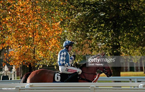 Barry Geraghty makes his way out on One Term for the Byrne Group Steeple Chase Race at Ascot Racecourse on November 1 2014 in Ascot England