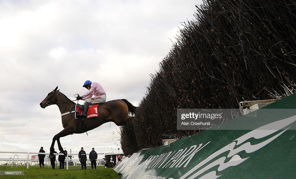 <a gi-track='captionPersonalityLinkClicked' href=/galleries/search?phrase=Barry+Geraghty&family=editorial&specificpeople=198943 ng-click='$event.stopPropagation()'>Barry Geraghty</a> riding Captain Conan clear the last to win The Betfred Mobile Lotto Challengers Novices' Steeple Chase at Sandown racecourse on February 02, 2013 in Esher, England.