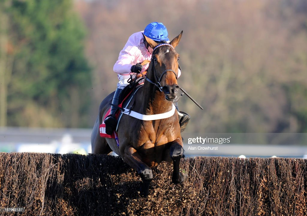 <a gi-track='captionPersonalityLinkClicked' href=/galleries/search?phrase=Barry+Geraghty&family=editorial&specificpeople=198943 ng-click='$event.stopPropagation()'>Barry Geraghty</a> riding Captain Conan clear the last to win The Markel Insurance Henry VIII Novices' Chase at Sandown racecourse on December 08, 2012 in Esher, England.