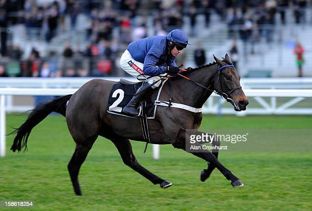 Barry Geraghty riding Captain Cutter win The Ascot Championship Standard Open national Hunt Flat Race at Ascot racecourse on December 21 2012 in...