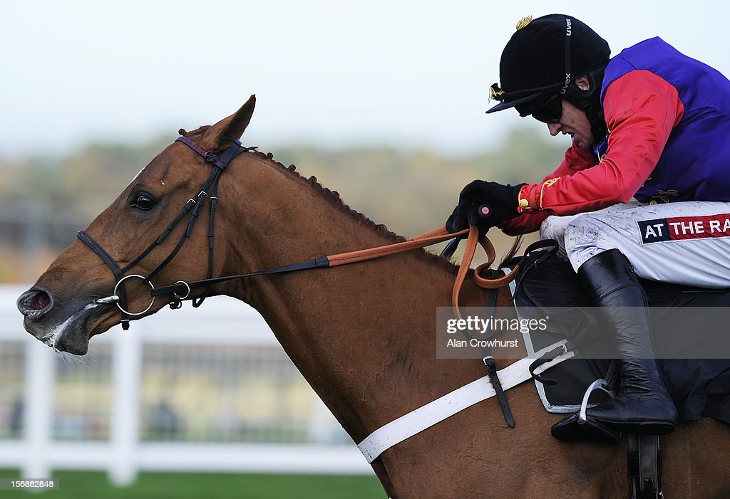 <a gi-track='captionPersonalityLinkClicked' href=/galleries/search?phrase=Barry+Geraghty&family=editorial&specificpeople=198943 ng-click='$event.stopPropagation()'>Barry Geraghty</a> riding Close Touch clear the last to win The Felix Rosenstiel's Widow & Son Introductory Hurdle Race at Ascot racecourse on November 23, 2012 in Ascot, England.