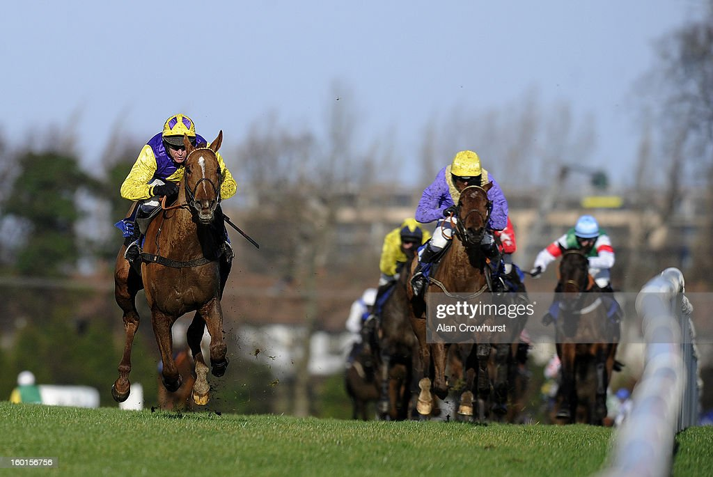 Barry Geraghty riding Legal Exit win The Frank Conroy Memorial Maiden Hurdle at Leopardstown racecourse on January 27, 2013 in Dublin, Ireland.
