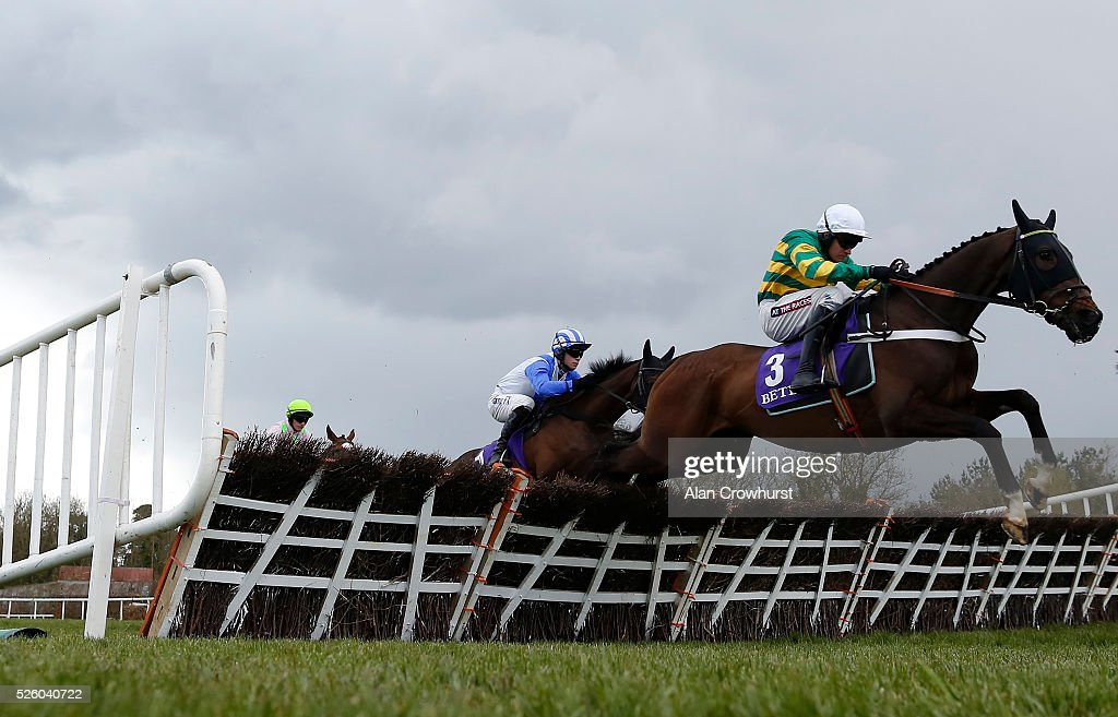 <a gi-track='captionPersonalityLinkClicked' href=/galleries/search?phrase=Barry+Geraghty&family=editorial&specificpeople=198943 ng-click='$event.stopPropagation()'>Barry Geraghty</a> riding My Tent Or Yours in action at Punchestown racecourse on April 29, 2016 in Naas, Ireland.