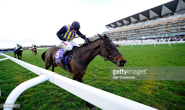 Barry Geraghty riding O'Faolains Boy clear the last to win RSA Trial Novices' Steeple Chase at Ascot racecourse on February 15 2014 in Ascot England