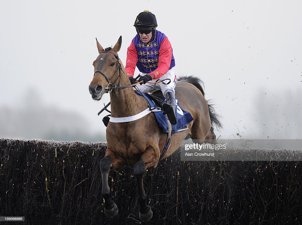 <a gi-track='captionPersonalityLinkClicked' href=/galleries/search?phrase=Barry+Geraghty&family=editorial&specificpeople=198943 ng-click='$event.stopPropagation()'>Barry Geraghty</a> riding Open Hearted during the Betfred Double Delight Novices' Chase at Newbury racecourse on January 16, 2013 in Newbury, England.