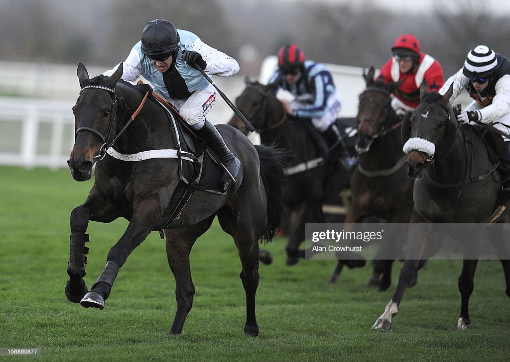 <a gi-track='captionPersonalityLinkClicked' href=/galleries/search?phrase=Barry+Geraghty&family=editorial&specificpeople=198943 ng-click='$event.stopPropagation()'>Barry Geraghty</a> riding Petit Robin clear the last to win The Canaccord Genuity Handicap Hurdle Race at Ascot racecourse on November 23, 2012 in Ascot, England.
