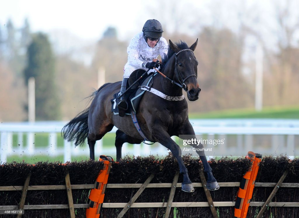 <a gi-track='captionPersonalityLinkClicked' href=/galleries/search?phrase=Barry+Geraghty&family=editorial&specificpeople=198943 ng-click='$event.stopPropagation()'>Barry Geraghty</a> riding Royal Boy clear the last to win The Iron Stand 'National Hunt' Maiden Hurdle Race at Ascot racecourse on December 20, 2013 in Ascot, England.