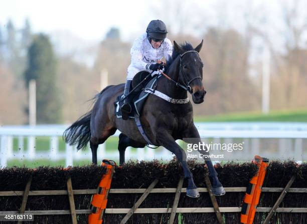 Barry Geraghty riding Royal Boy clear the last to win The Iron Stand 'National Hunt' Maiden Hurdle Race at Ascot racecourse on December 20 2013 in...