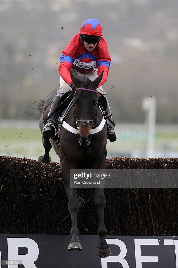Barry Geraghty riding Sprinter Sacre clear the last to win The Victor Chandler Steeple Chase at Cheltenham racecourse on January 26, 2013 in Cheltenham, England.