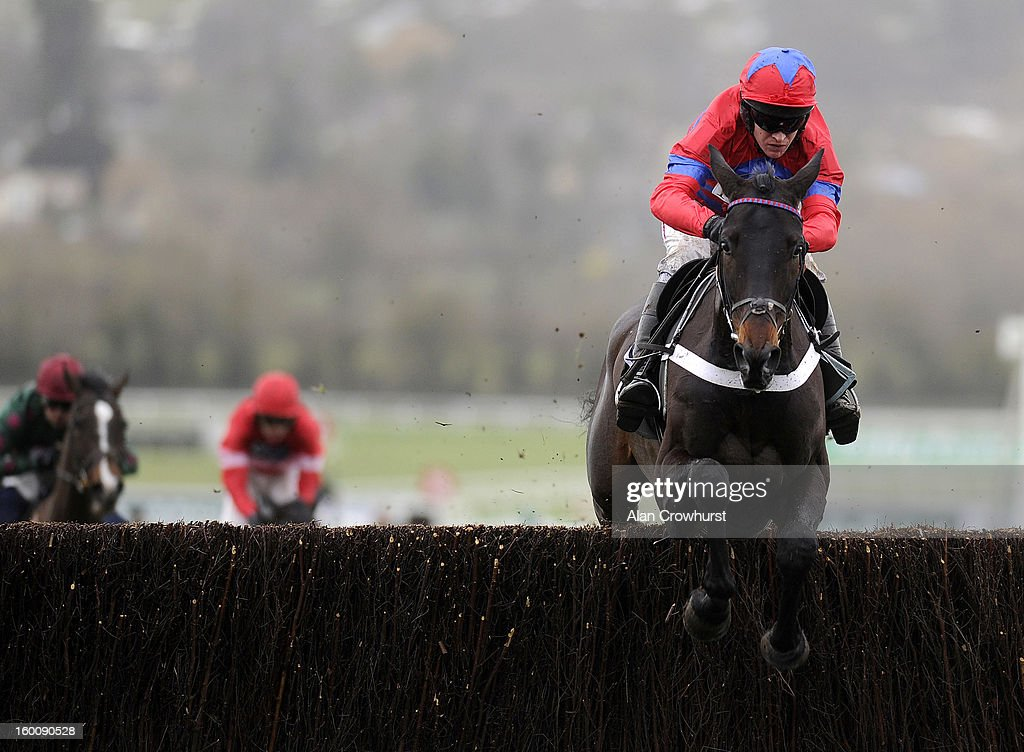 <a gi-track='captionPersonalityLinkClicked' href=/galleries/search?phrase=Barry+Geraghty&family=editorial&specificpeople=198943 ng-click='$event.stopPropagation()'>Barry Geraghty</a> riding Sprinter Sacre clear the last to win The Victor Chandler Steeple Chase at Cheltenham racecourse on January 26, 2013 in Cheltenham, England.