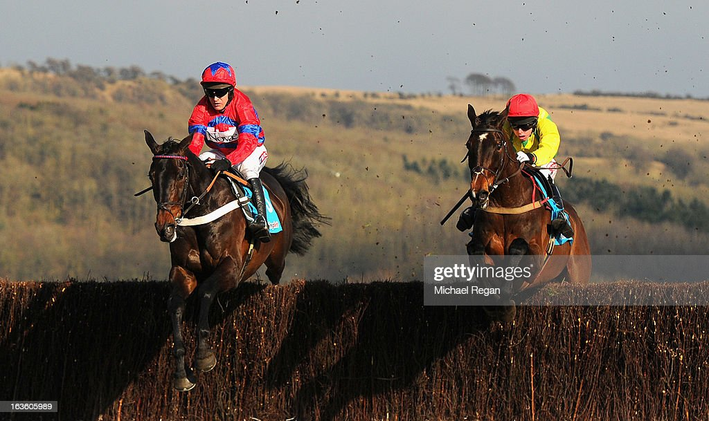 <a gi-track='captionPersonalityLinkClicked' href=/galleries/search?phrase=Barry+Geraghty&family=editorial&specificpeople=198943 ng-click='$event.stopPropagation()'>Barry Geraghty</a> riding Sprinter Sacre (L) in action with Sizing Europe ridden by A E Lynch on their way to victory in the Queen Mother Champion Steeple Chase during Ladies Day at Cheltenham Racecourse on March 13, 2013 in Cheltenham, England.