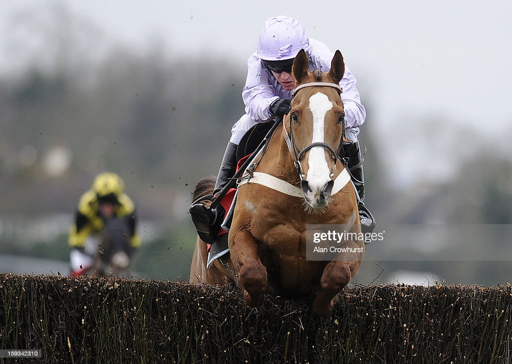<a gi-track='captionPersonalityLinkClicked' href=/galleries/search?phrase=Barry+Geraghty&family=editorial&specificpeople=198943 ng-click='$event.stopPropagation()'>Barry Geraghty</a> riding Tetlami clear the last to win The Williamhill.com Novices' Steeple Chase Kempton racecourse on January 12, 2013 in Sunbury, England.
