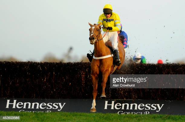 Barry Geraghty riding Triolo D'Alene clear the last to win The Hennessy Gold Cup Steeple Chase at Newbury racecourse on November 30 2013 in Newbury...