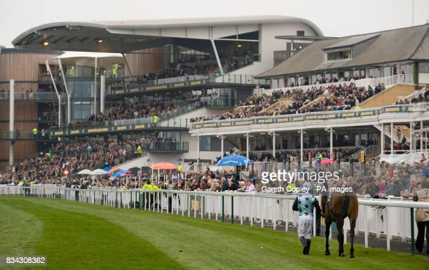 Barry Keniry walks Paga Starprincess back at falling in the John Smith's 250th Anniversary 4 year old novices hurdle during the Grand National...