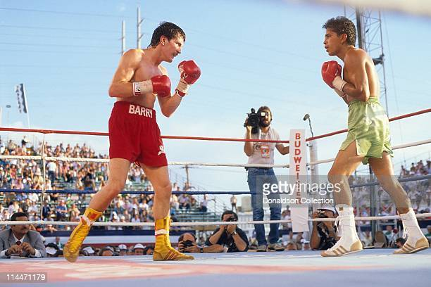 Barry McGuigan and Steve Cruz boxing on June 23 1986 in Las Vegas Nevada