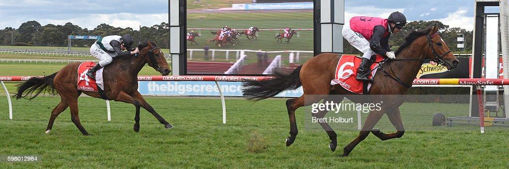 Barthelona ridden by Ryan Maloney wins The Grand Hotel Frankston Handicap at Ladbrokes Park Hillside Racecourse on August 31 2016 in Springvale...