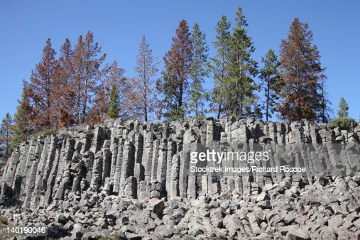 Basalt Columns formed by cooling lava, Yellowstone National Park, Wyoming.