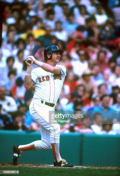 Boston Red Sox Carl Yastrzemski in action at bat during game at Fenway Park Boston MA CREDIT Dick Raphael