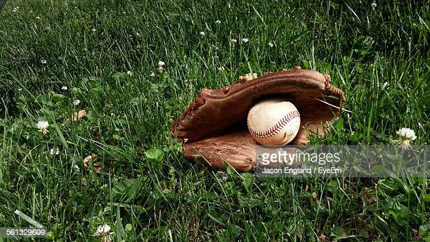 Baseball Glove On Grassy Field