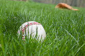 A baseball sits in the grass on a field with a glove blurry in the background. Shallow depth of field