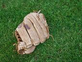 Baseball mitt on grass