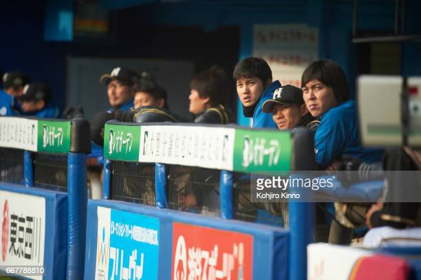 NipponHam Fighters Shohei Ohtani in dugout during game vs Chiba Lotte Marines at Chiba Marine Stadium Otani is the reigning league MVP excelling as...