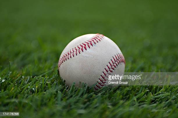 Baseball on green grass.