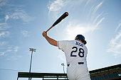 Baseball player swinging bat, rear view