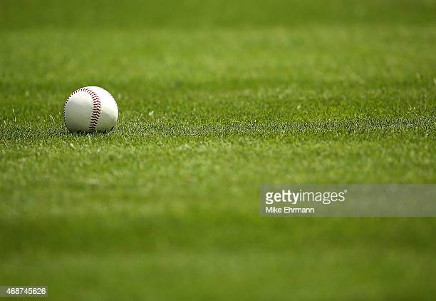 A baseball sits on the grass during Opening Day between the Miami Marlins and the Atlanta Braves at Marlins Park on April 6 2015 in Miami Florida