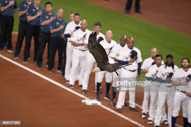 World Series View of bald eagle flying by during anthem before Houston Astros vs Los Angeles Dodgers at Minute Maid Park Game 3 Houston TX CREDIT Al...