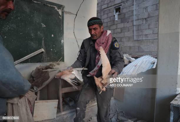 Bashir a 55yearold Syrian man recovers pigeons from the rubble of a place he used to keep them following a reported air strike by government forces...