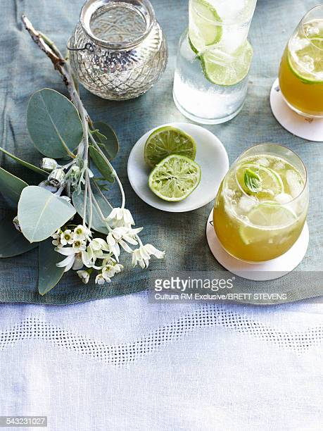 Basil lime and summer cocktail
