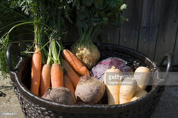 Basket full of vegetables
