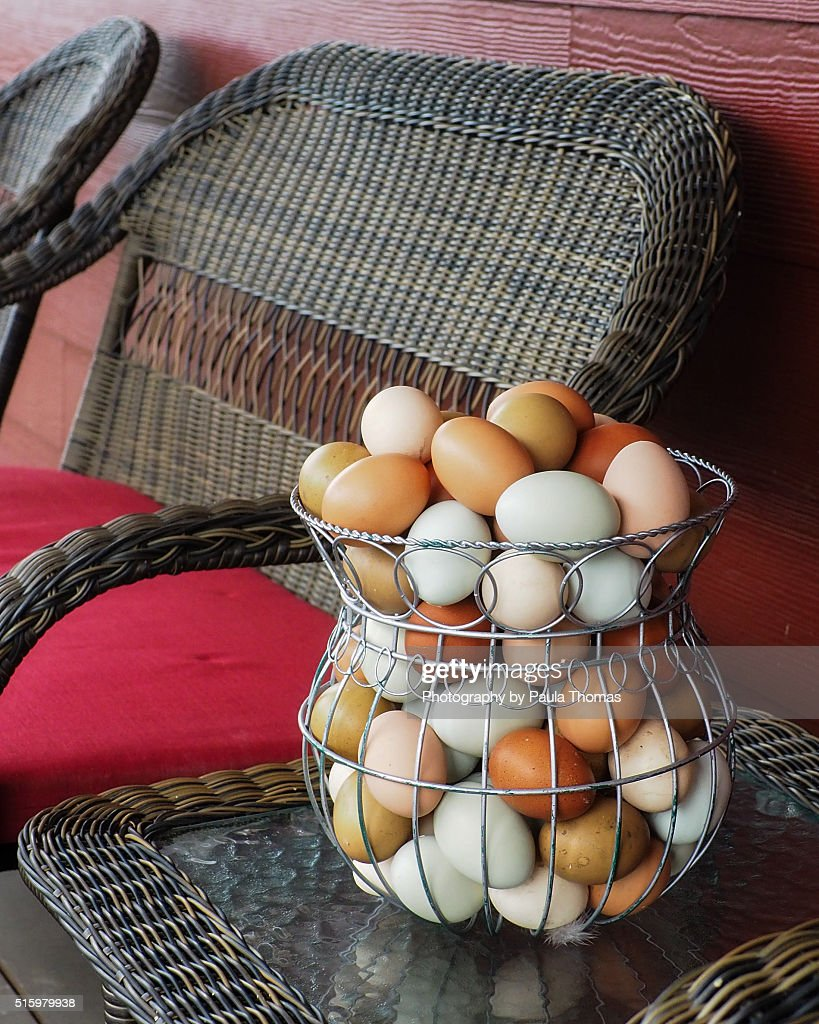 basket of backyard chicken eggs stock photo getty images