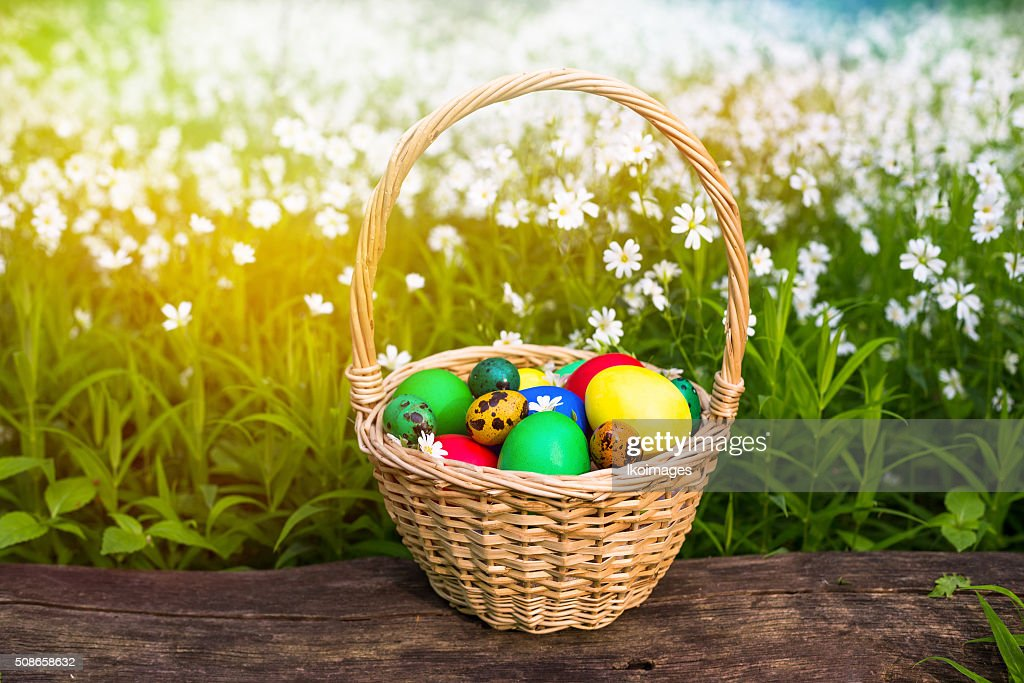 Basket of easter eggs on meadow in green spring grass : Stock Photo