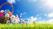 Basket of Decorated Eggs With Flowers On Green Meadow - Easter Holiday Background