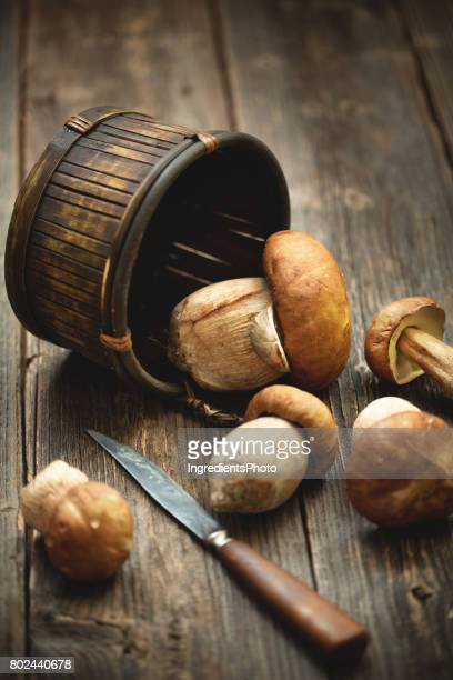 A basket of fresh ceps with kitchen knife on a wooden table.