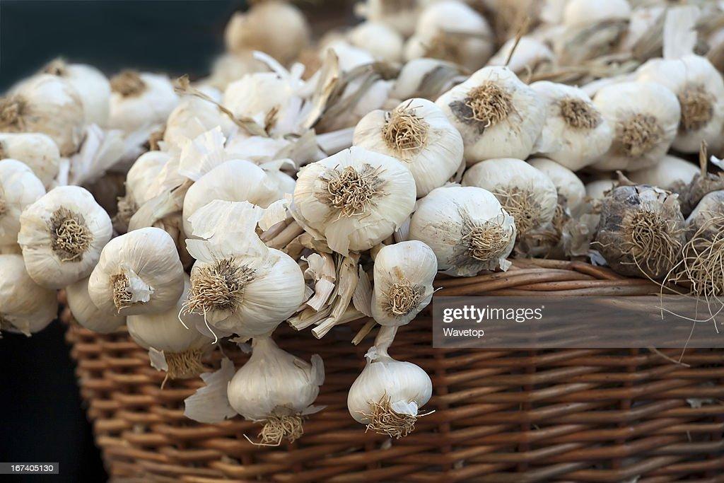 Basket of garlic : Stock Photo