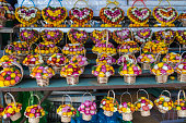 Basket of Helichrysum flowers sell in the Dalat Market