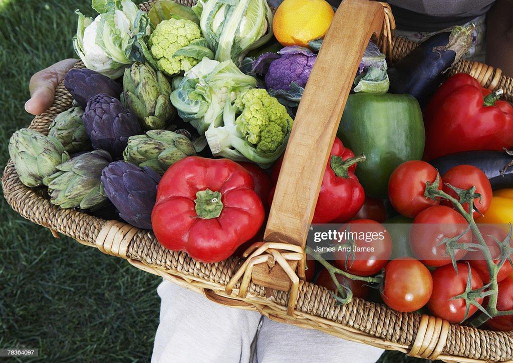 Basket of organic vegetables : Stock Photo
