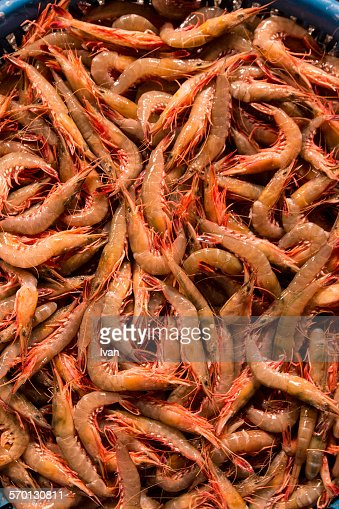 A basket of raw shrimp in tradition seafood market