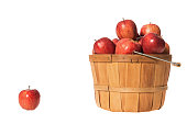A wooden bushel basket full of Red Delicious Apples with a single apple sitting on a white seamless background