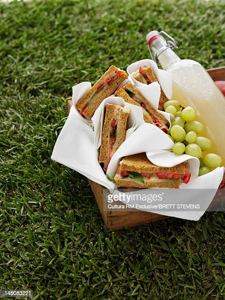Basket of sandwiches, grapes and soda