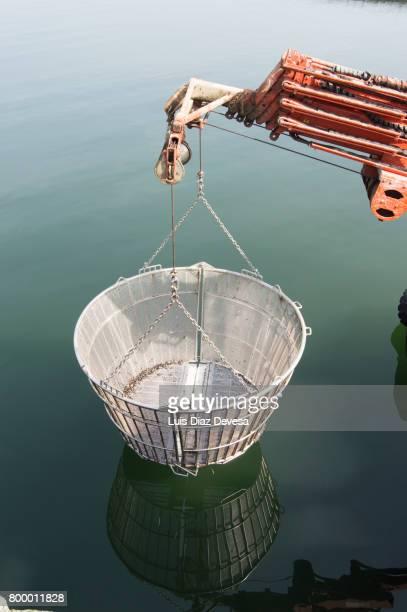 Basket of steel and mobile crane of the ship