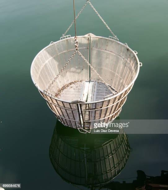 Basket of steel