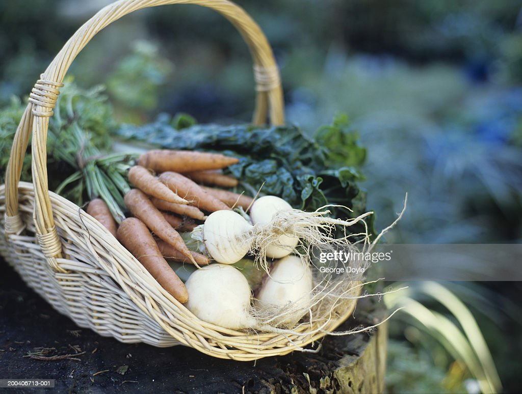 Basket of turnips and carrots, close up : Stock Photo
