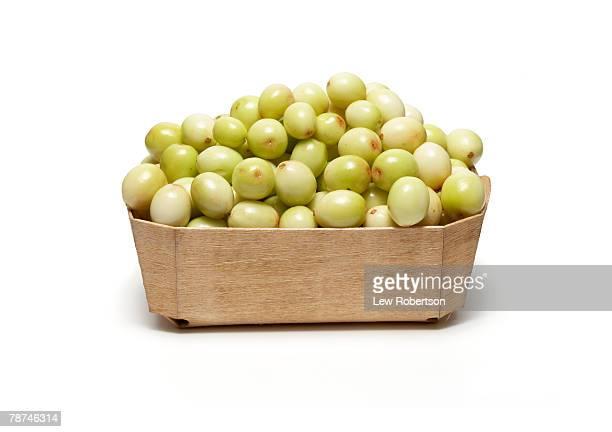 Basket of Unripe Cranberries