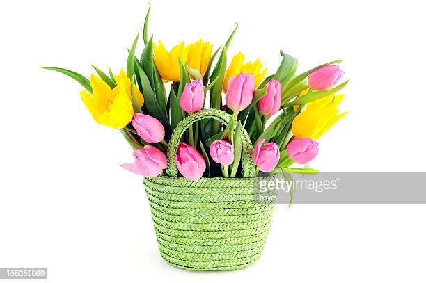 Panier avec bouquet de rose jaune tulipes sur un arrière-plan blanc